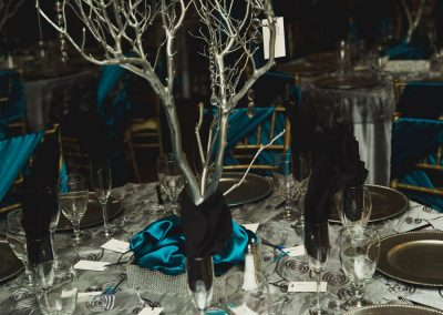 Wedding Venues Silver Fall Decor