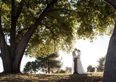 Villa Tuscana Reception Hall in mesa showing nearby park area with bride and groom under trees